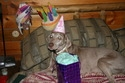 laceys-13th-bday2-125