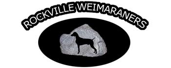 Rockville Weimaraners